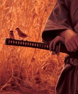 Mutfakta Samuray Var Vipassana Meditasyon Mutfağı