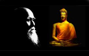 Buda'nın Aikido Sensei'ne Öğütleri